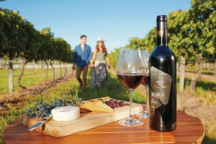 Wine and cheese in a grove