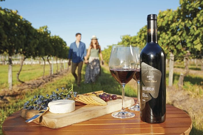 cheese and wine in a grove