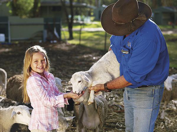 Girl feeding lamb on a farm