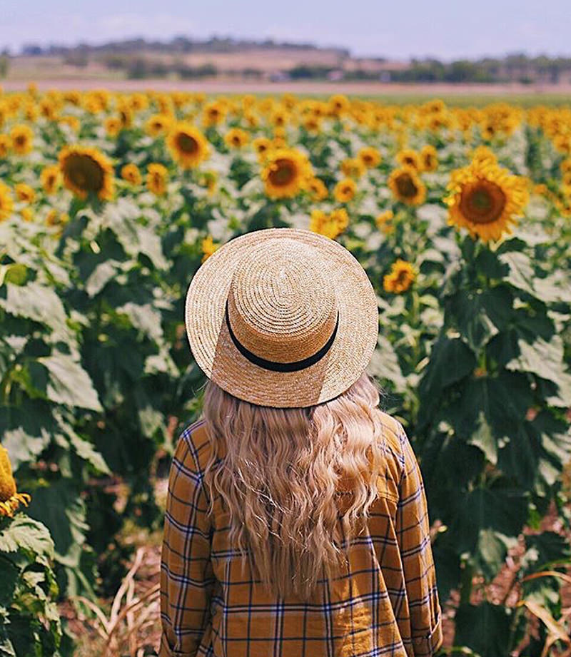 Lady in a hat in a field of sunflowers