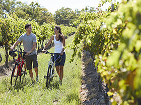 couple in winery biking