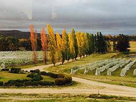 Harrington Glen Estate field in Autumn
