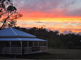 Twisted Gum Wines at sunset