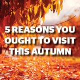 5 reasons you ought to visit this autumn