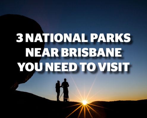 3 National Parks near Brisbane You Need to Visit