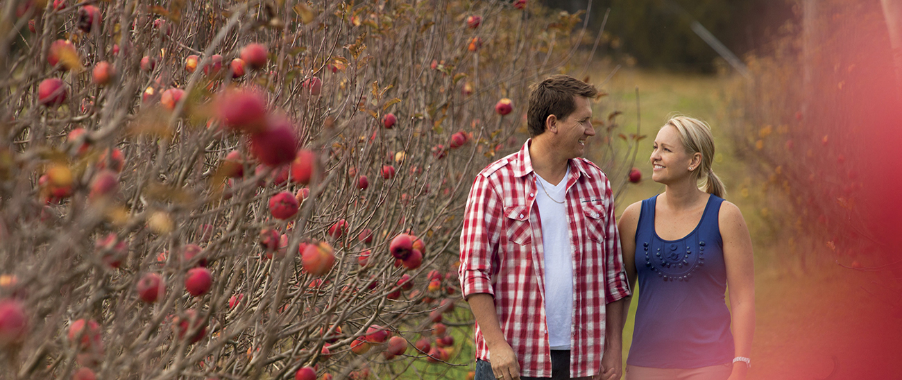 Couple walking through apple blossoms