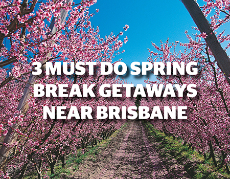 3 Must do Spring Break Getaways Near Brisbane