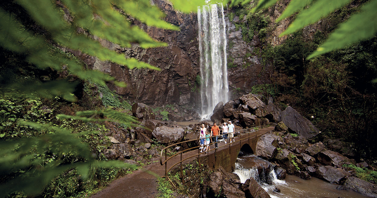 7 Reasons To Go Chasing Queen Mary Falls