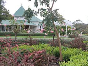 Garden at Braeside Homestead, Dalveen