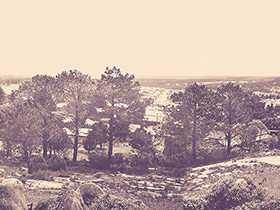 Sepia photo of Stanthorpe in Stanthorpe Museum