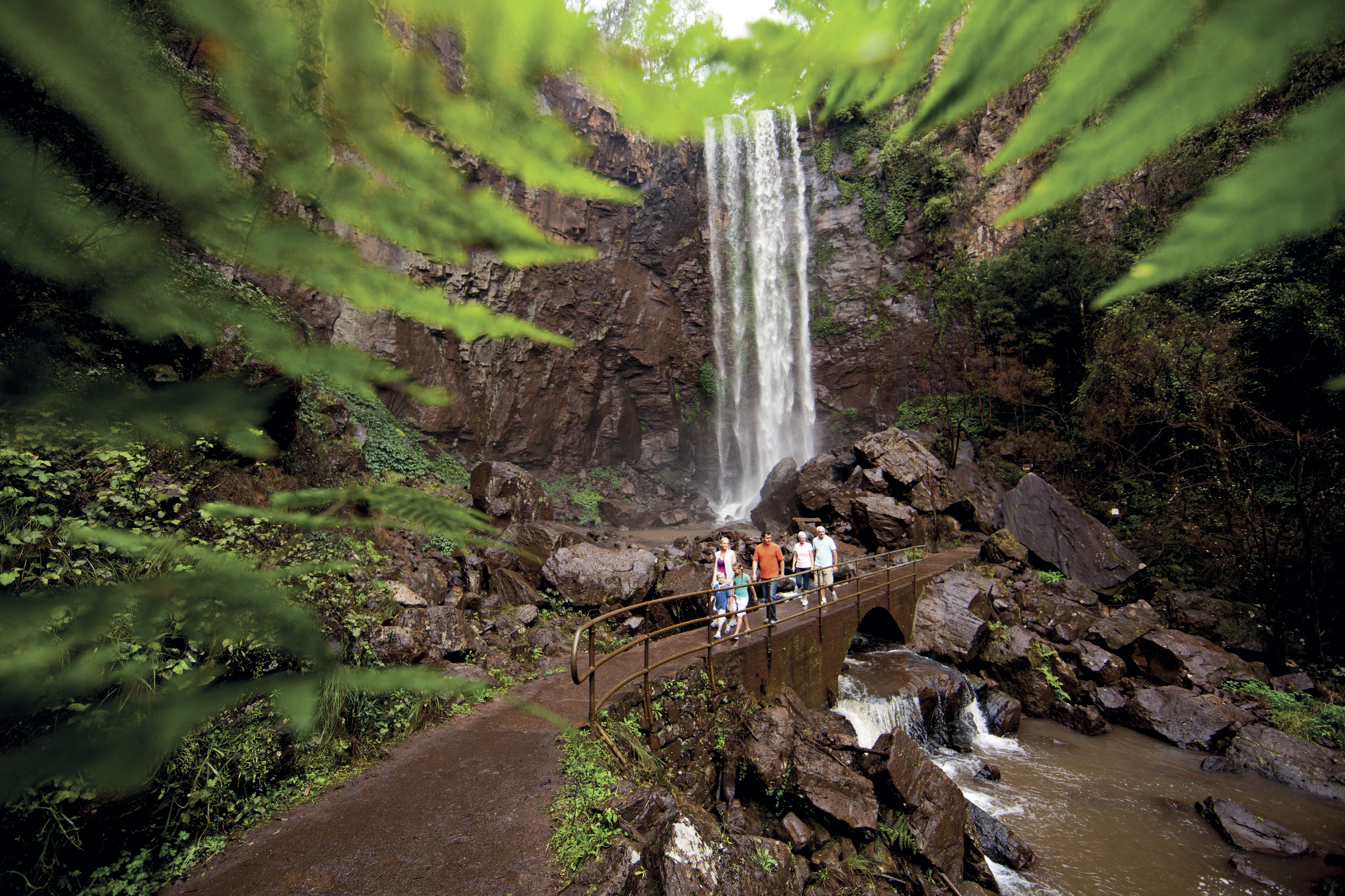 Group going for a walk at Queen MAry Falls